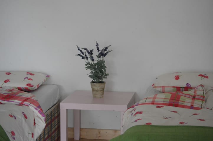 Carrick Riverside Self Catering - Carrick-On-Shannon - Andre