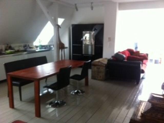Dachgeschoss-Loft in Zürich-City - Zürich - Apartment