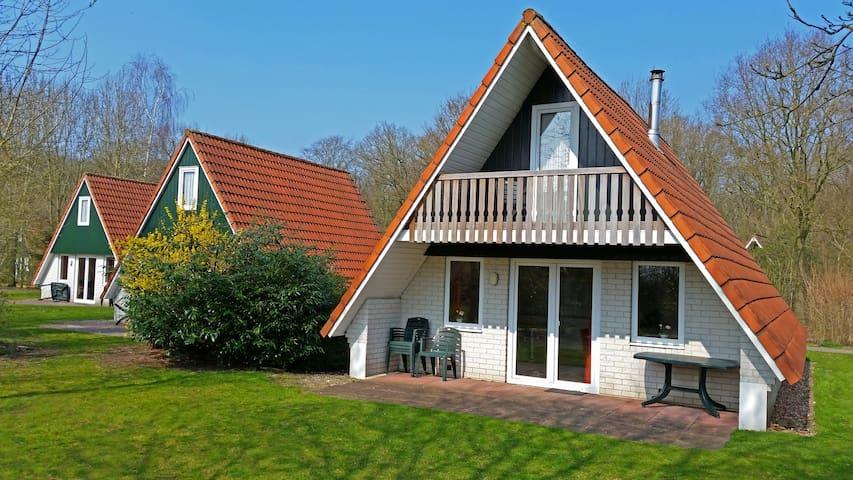 Vrijstaande villa in het groen - Gramsbergen