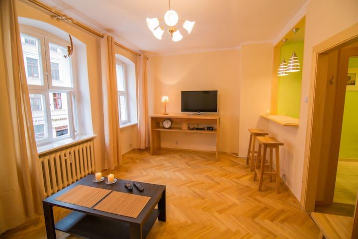 Apartament księżycowy - toruński - Appartement
