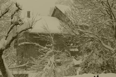 Wood Lodge, seule au monde - Limone Piemonte - Lejlighed