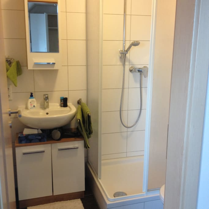 That pic shows the bathroom with the shower.