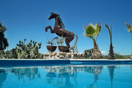 Ranch B&B+FREE Full Board & Riding - Buenavista - Bed & Breakfast