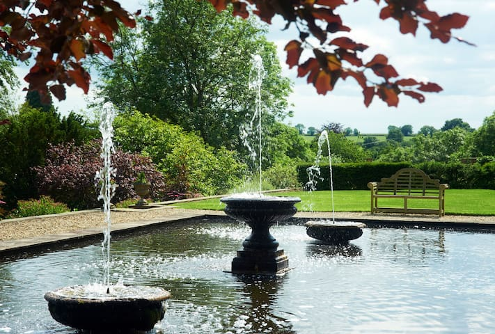 Fountains on the ornamental pond