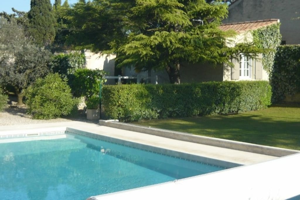 Vue d'ensemble jardin et piscine