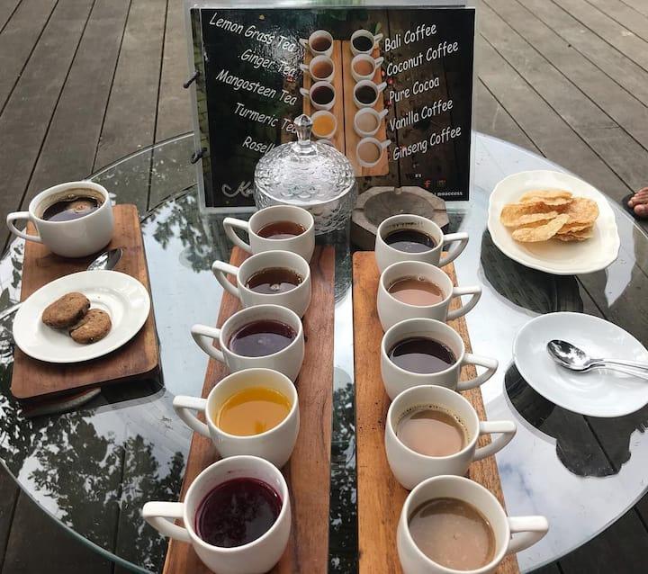 Bali Luwak coffee plantation