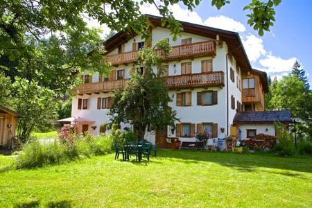 """DolomiTiAmo """"Cà Stella"""" Home in the Dolomites - Appartement"""