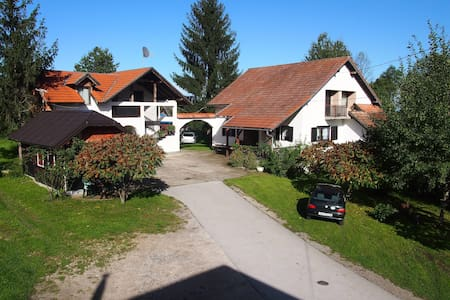 Guesthouse Ilija Hodak -APP for two - Selište Drežničko