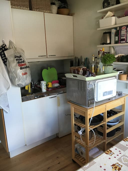 miniature kitchen, two hotplates, microwave - no oven