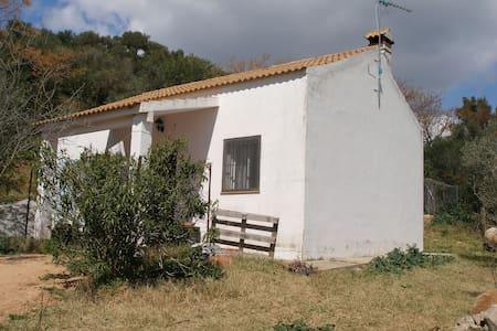 Casa rural en Algar - Algar - 一軒家