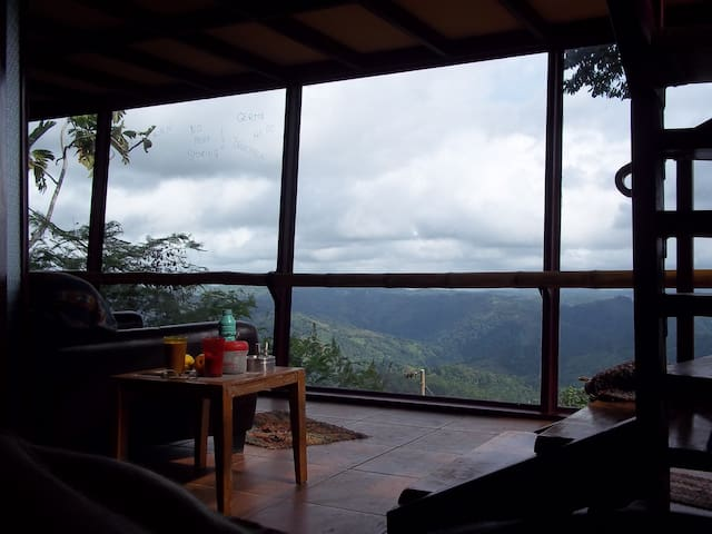 Birdhouse in the sky,mountain retre - Mercedes Sur de Puriscal Costa Rica - Casa