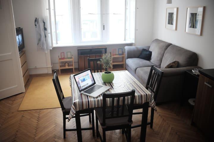 CAPArtman – homey flat downtown - Budapest - Apartment