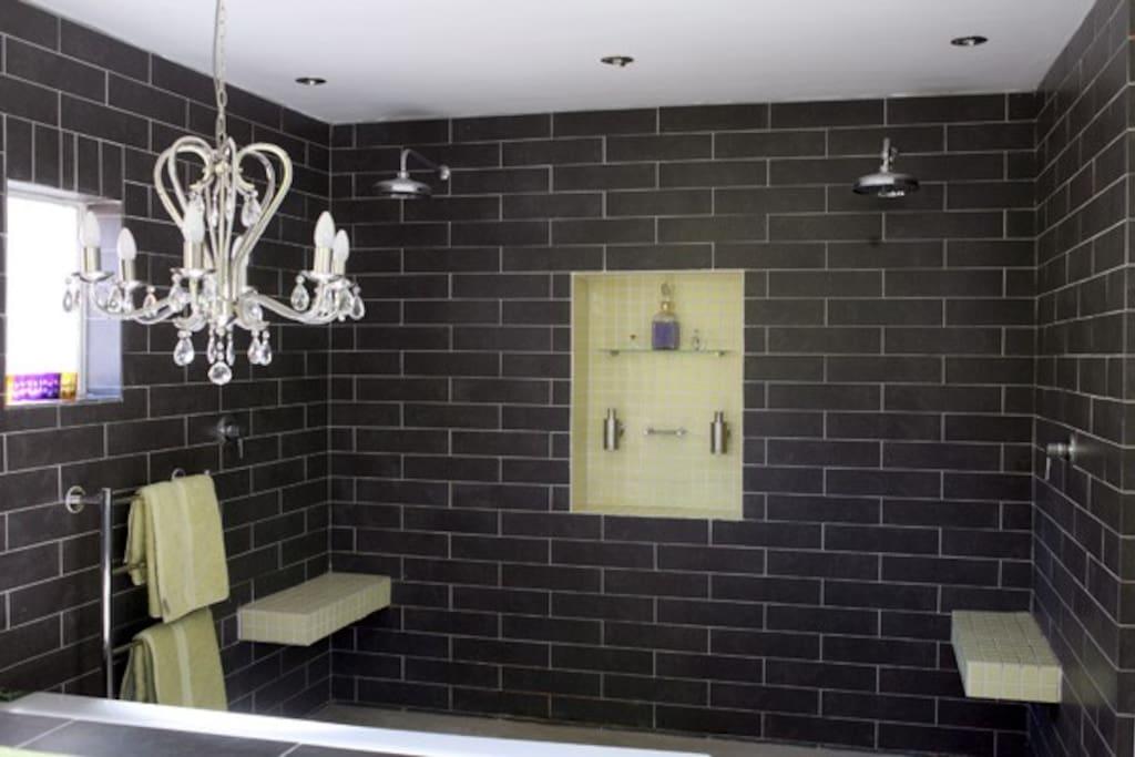 Master Bathroom Double Shower and Bath