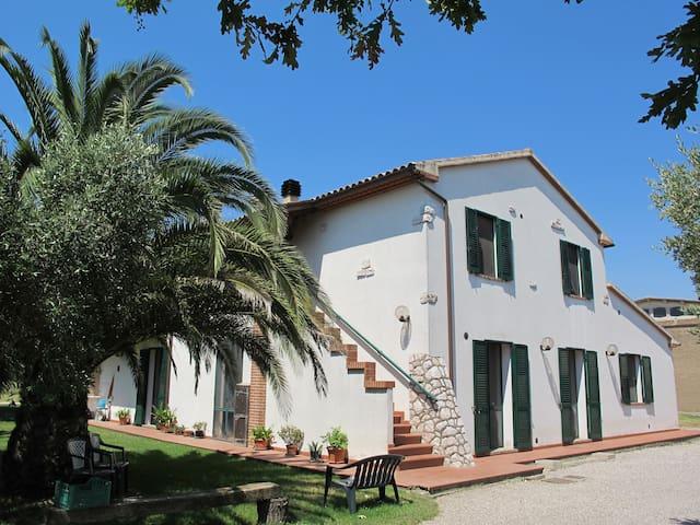 Agriturismo Val Tanaro - Marina di Grosseto - Apartment