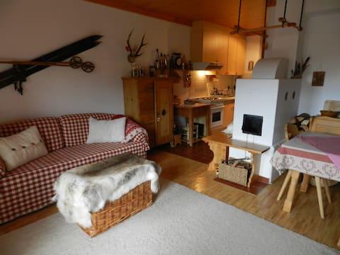 Lovely lodge directly on ski-run 2