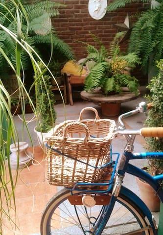 casa/estudio jardín - León - Casa