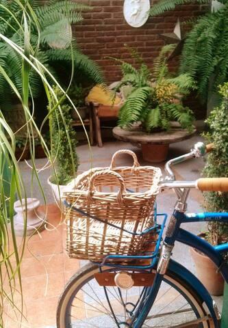 casa/estudio jardín - León - House