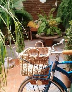 casa/estudio jardín - León - Haus