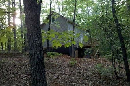 Hidden Gem - Cleveland - House