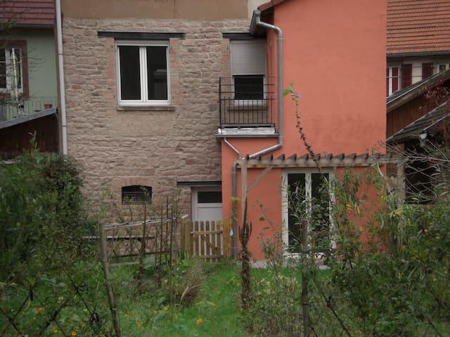 GRAND GÎTE LUMINEUX AVEC VUE SUPERBE - Lutzelbourg - Apartamento