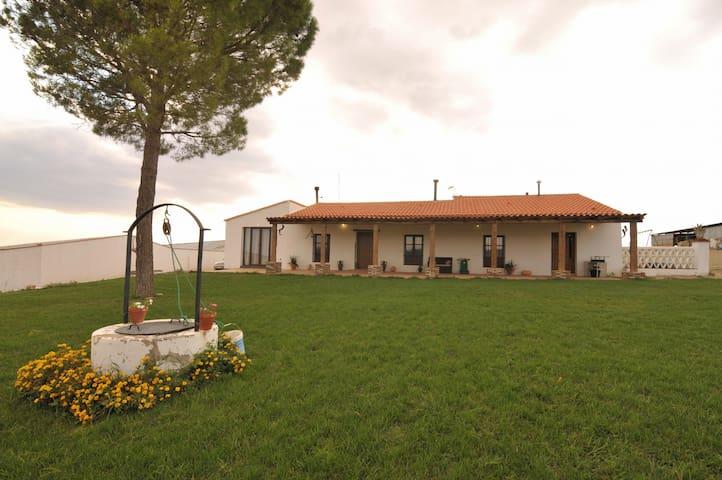 Acogedor apartamento en finca de viñedos y olivos