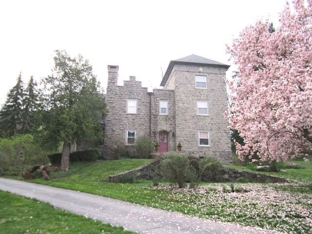 "The Prince's quarters in a ""Castle"" in Villanova"