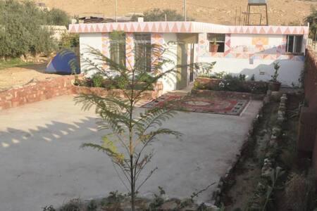 Garden house tent - Wadi Mousa