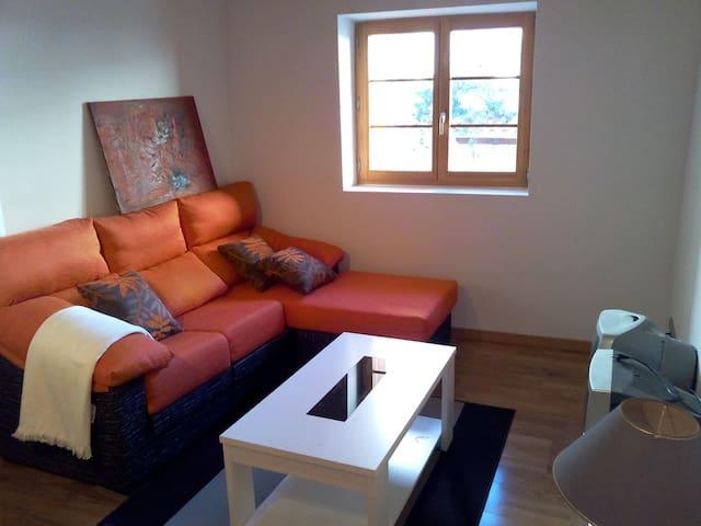 Disfruta del pirineo navarro - Burgui - Apartamento