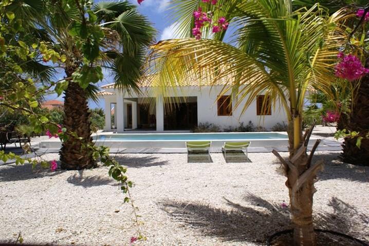 Luxe moderne villa met priv zwembad - Kralendijk - Villa