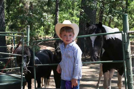 Birdsong Pony Retreat Sleeps 4  - Oakhurst