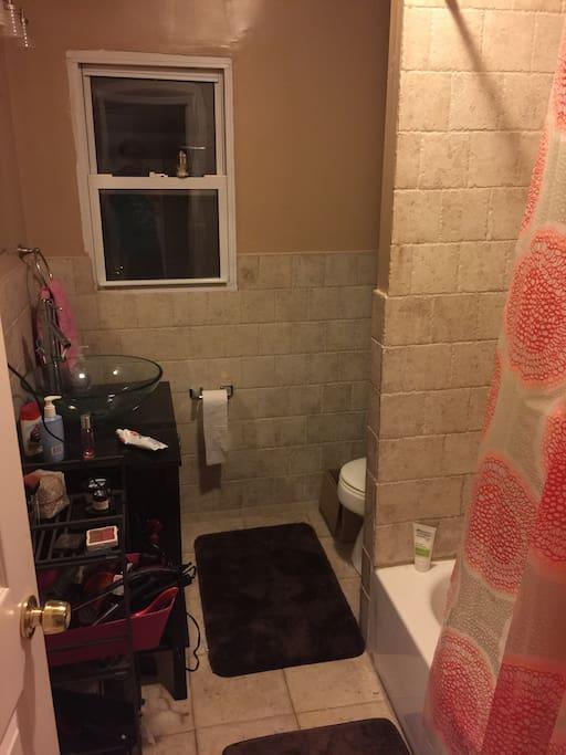 bathtub shower toilet