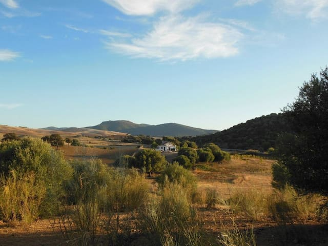 La Casita del Cerro del Queso - Villamartín - Casa