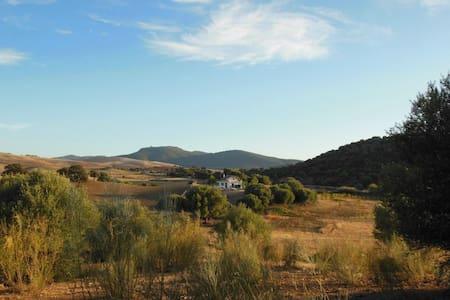 La Casita del Cerro del Queso - Villamartín