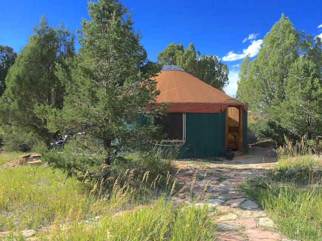 Cozy Yurt Bordering Mesa Verde