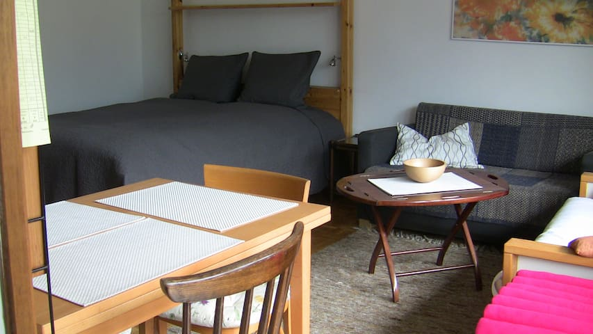 Neat 1 Room Apt - Bad Hofgastein - Bad Hofgastein - Apartment