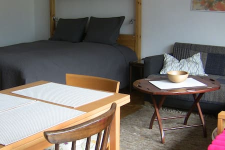 Neat 1 Room Apt - Bad Hofgastein - Bad Hofgastein - Appartement