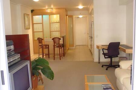 Luxury 1 bedroom unit spacious CITY