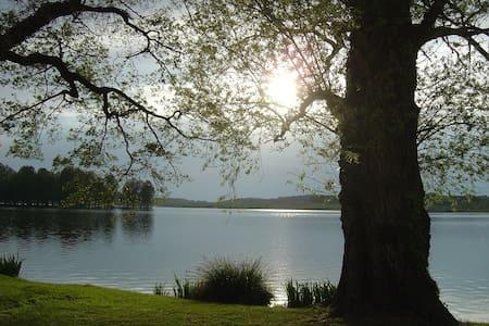 Sur les rives du Lac de Soustons ... - Soustons