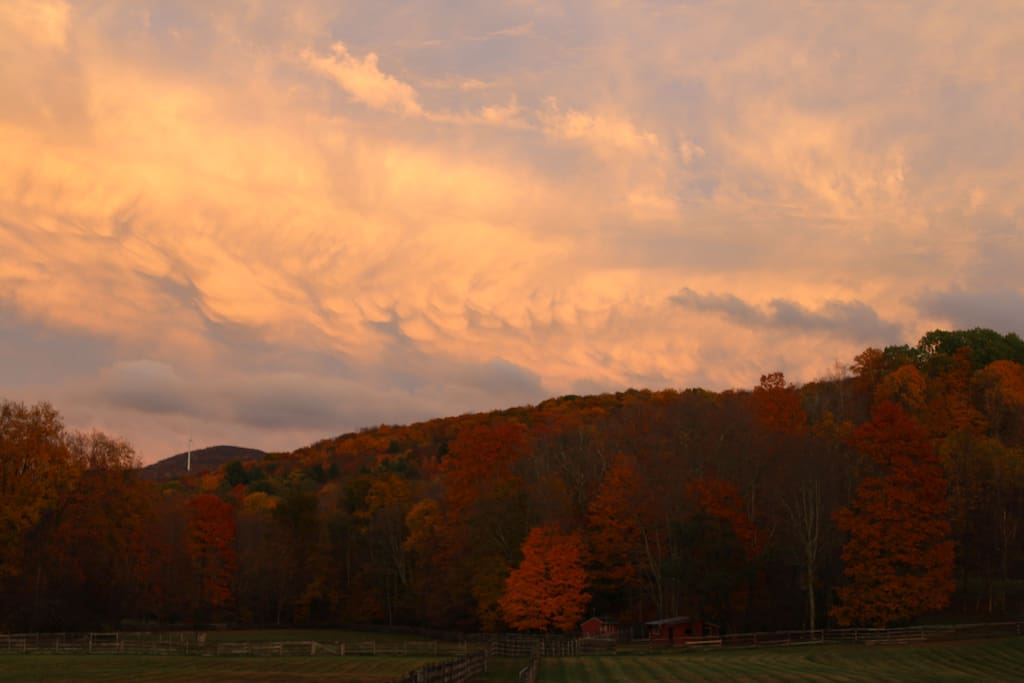 Fall Colors and Serene Sunsets