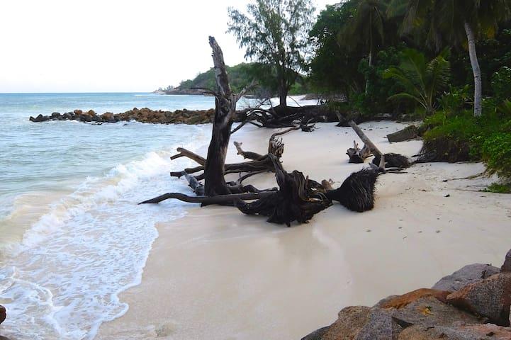 Anse Kerlan Beach