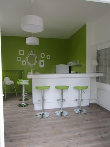 petit appartement avec mezzanine - Amboise - Appartement