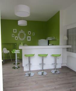 petit appartement avec mezzanine - Amboise