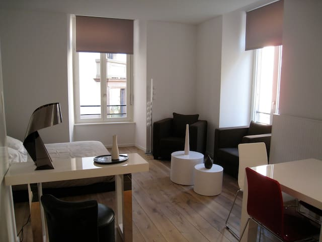 CATHEDRALE:APPARTEMENT DIDEROT 35m2