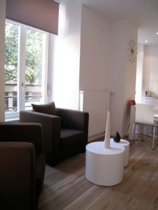 Cathedrale appartement diderot 35m2 apartments for rent for Decoration appartement 35m2