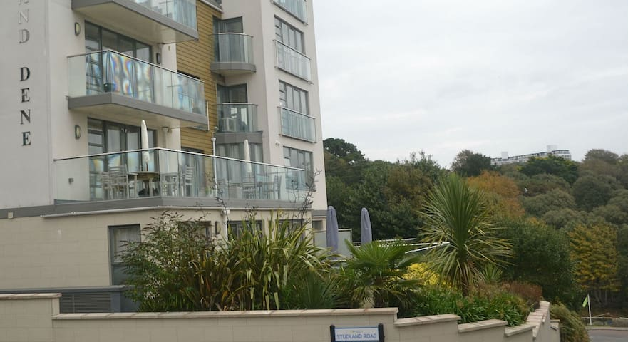 Stunning Studio Apartment close to the Beach - Bournemouth - Flat