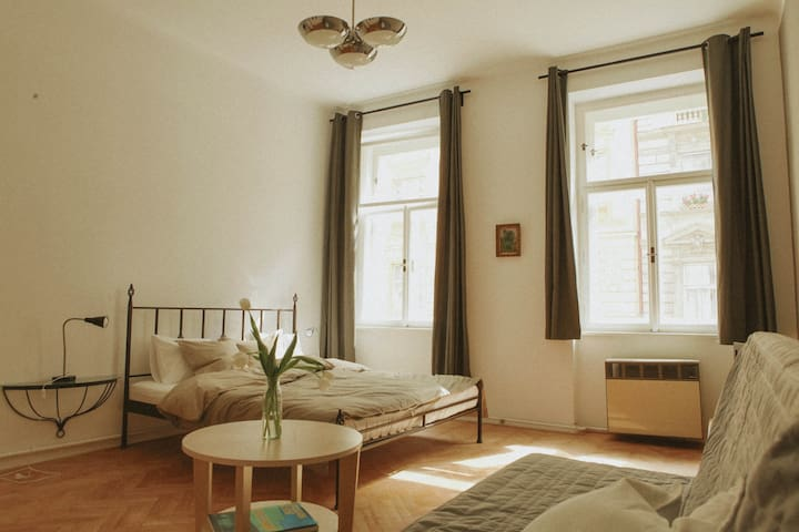 New stylish apartment Prague center - Praag - Appartement