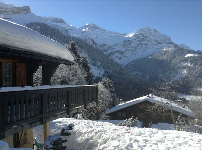 Chalet/apato-3 bedroom-ground level - Ormont-Dessus - Appartement