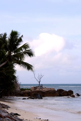 Anse Kerlan Beach and Scenery nearby