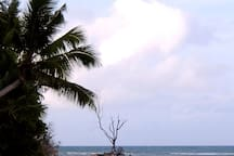 Anse Kerlan Beach and Scenery nearby