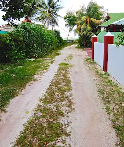Pathway past our property toward beach 40 metres away from our wall